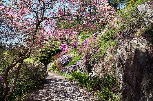 Jenny Rainbow - Walk in Spring Eden. Heavenly Blooms