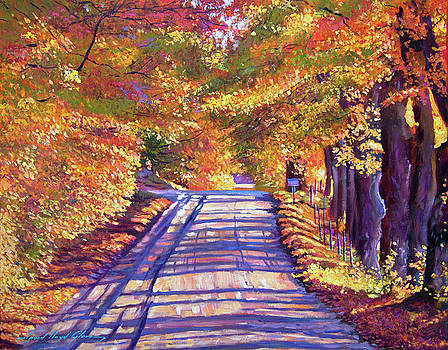 Walking In Vermont by David Lloyd Glover
