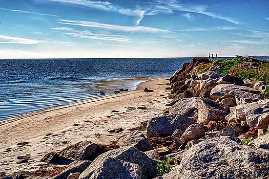 Walking on the Beach by Dennis Dugan