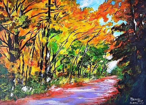 Walks in temperate forest by Francivaldo Brandao