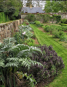 Walled French Garden by Dave Mills
