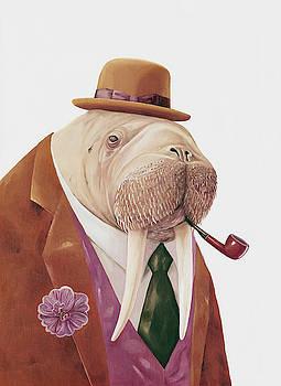 Walrus by Animal Crew