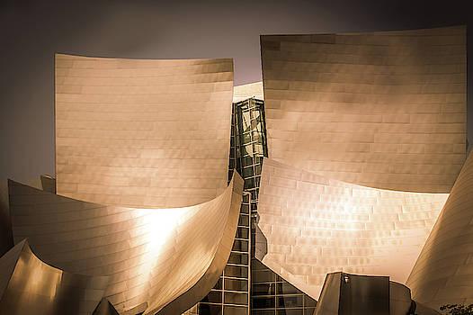 Walt Disney Concert Hall, Los Angeles by Art Spectrum