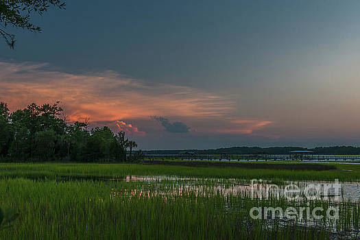 Wando River Marsh Magic by Dale Powell