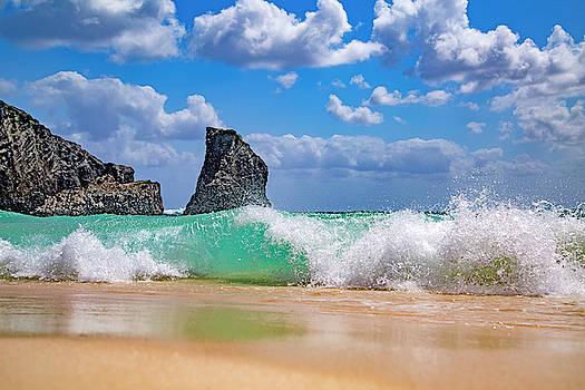 Warm Coastal Greetings by Betsy Knapp