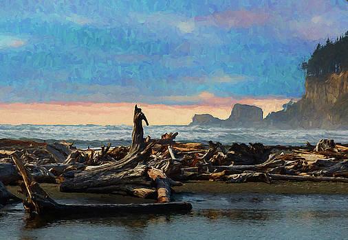 Mike Penney - Washington Coast 20