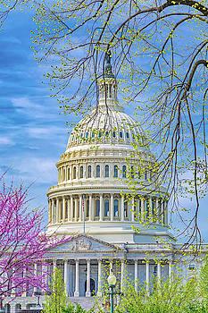 Washington DC Capitol Springtime by Betsy Knapp
