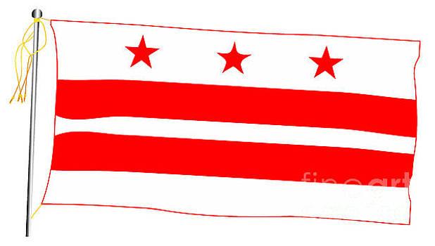 Washington DC State Waving Flag And Flagpole by Bigalbaloo Stock