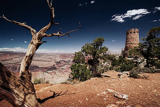 Watch tower at Grand Canyon National Park, Arizona by Kamran Ali