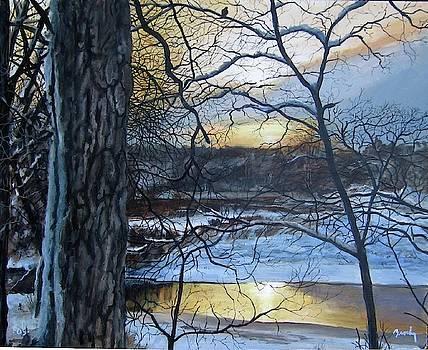 Watcher by William Brody