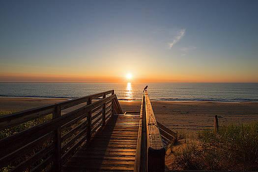 Watching the Sunrise by David Stasiak