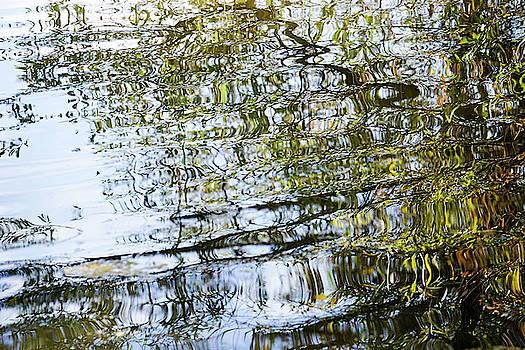 Water Reflection_74_17 by Tari Kerss