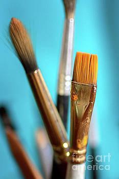 Watercolor Brushes by Susan Warren