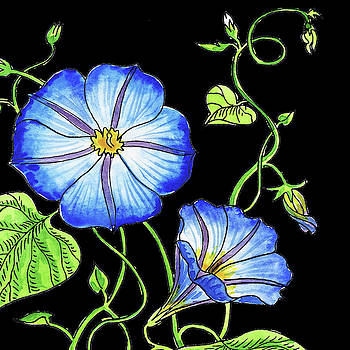 Watercolor Flowers Morning Glory by Irina Sztukowski