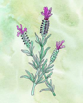 Watercolor French Lavender Botanical  by Irina Sztukowski