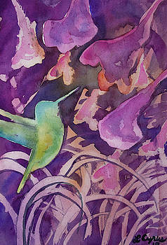 Watercolor - Hummingbird Design by Cascade Colors