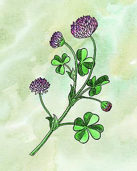 Watercolor Lucky Clover Flower Botanical  by Irina Sztukowski