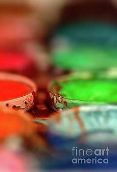 Watercolor Palette by Susan Warren
