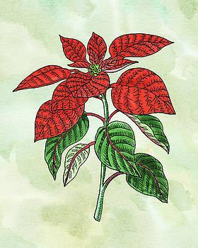 Watercolor Poinsettia Plant Botanical  by Irina Sztukowski