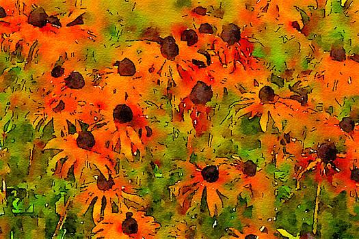 Bonnie Bruno - Watercolor Susans