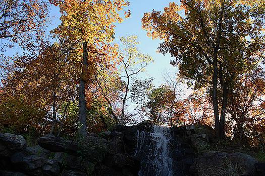 Waterfall 1 by Ellen Tully