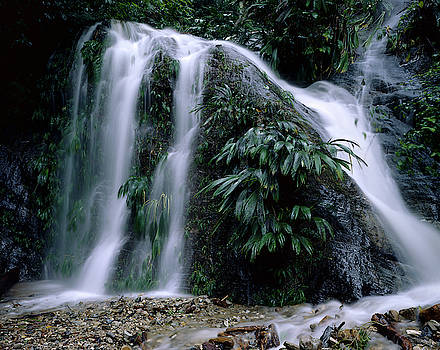 Waterfall  by Eugenio Opitz