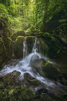 Waterfall in a fairytale-like forest by Manuel Martin