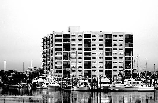 Waterfront Condos In Black And White by Cynthia Guinn