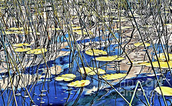 Waterlilies Escape by Margaret Koc