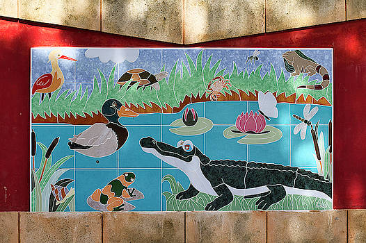 Watkin Park Wetlands Mural by Paul Rebmann