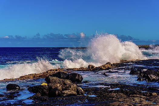 Wave Crash by John Bauer