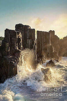 Wave Force by Evelina Kremsdorf