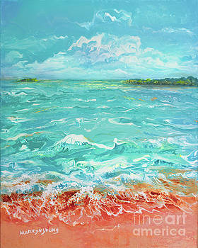 Waves at Sombrero Beach by Marilyn Young