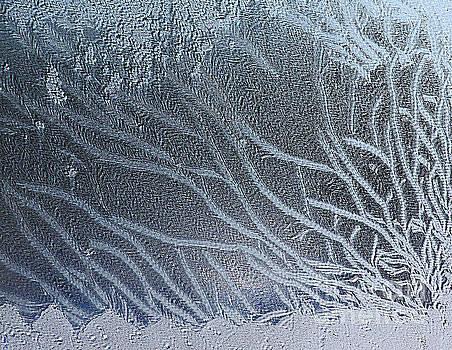 PJ Boylan - Waves of Grain