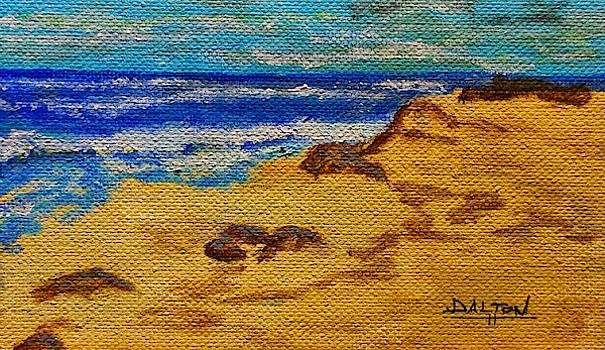 Waves on a Rocky Beach by George Dalton