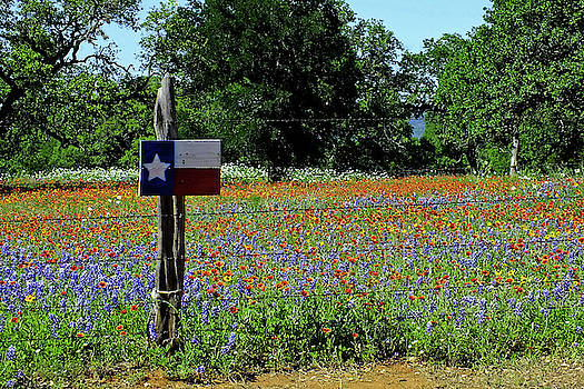 We Are Texas Hill Country by Bill Morgenstern