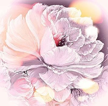 Wedding white gorgeous rose stardust  by Angela Whitehouse