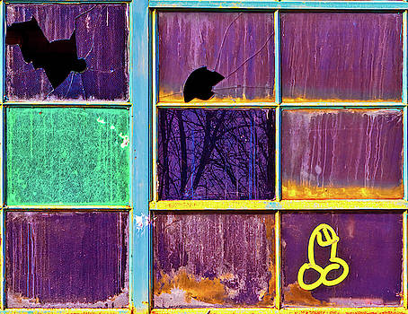 Weenie on a Window by Robert FERD Frank