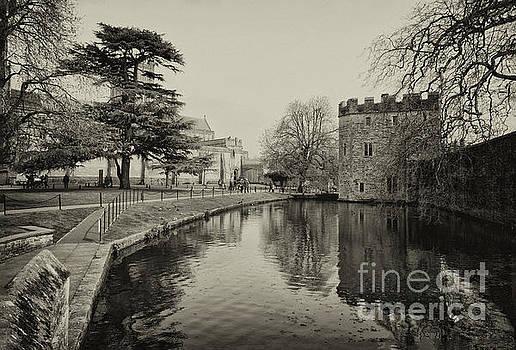 Wells Somerset by Lynn Bolt