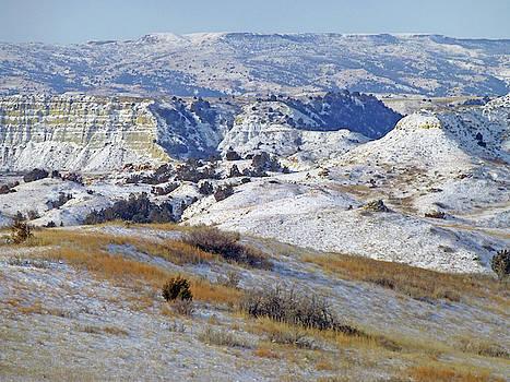 West Dakota Snow by Cris Fulton