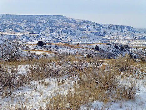 West Dakota Winter Prairie by Cris Fulton