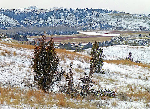 West Dakota Winter River by Cris Fulton