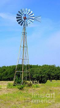 West Texas Windmill A9718 by Mas Art Studio