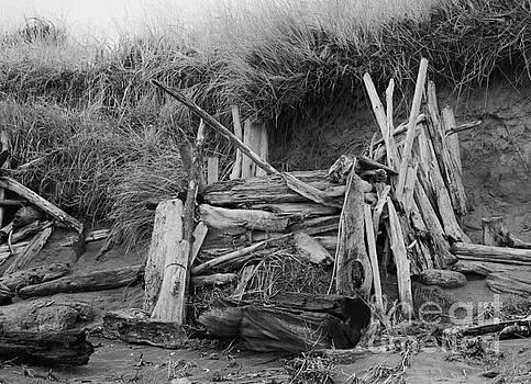 Westport Hut by Jeni Gray