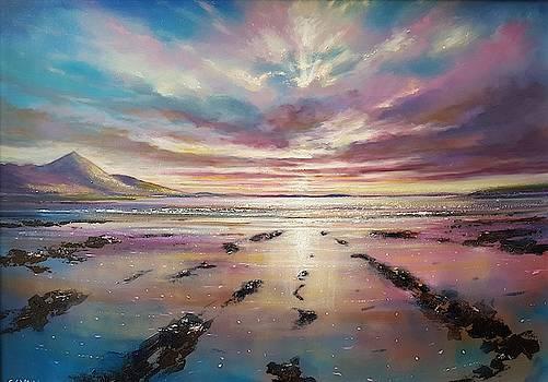 Westport sunset by Robert Shaw