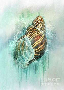 Wet Paint by Kelley Freel-Ebner