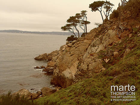 Whaler's Cove Trail by Marte Thompson