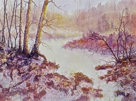 Where Nature Flows by Carolyn Rosenberger