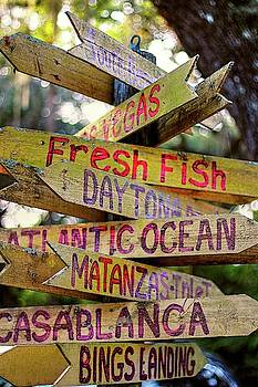 Which Way To Go For Fresh Fish  by Carol Montoya