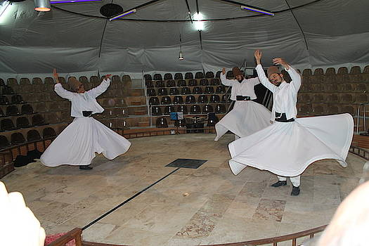 Whirling Dervishes by Sandra Bourret